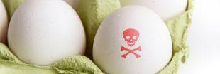 Œufs contaminés : un deuxième insecticide en cause