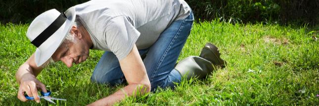 3 pratiques courantes en jardinage à ne surtout pas adopter