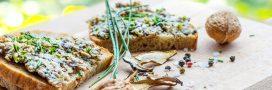 Rillettes végétales aux noix et lentilles corail