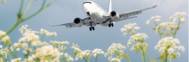À l'aéroport de Roissy aussi, on protège la biodiversité