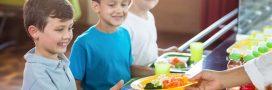 Sondage: Êtes-vous favorable à un menu alternatif végétarien dans les cantines scolaires?