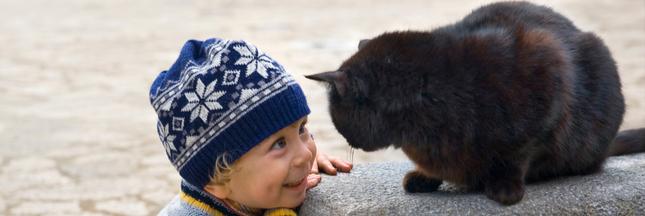 Des traducteurs pour animaux disponibles d'ici 10 ans