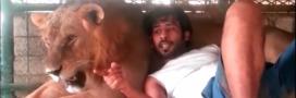 Émirats arabes unis: la fin des animaux sauvages comme animaux de compagnie