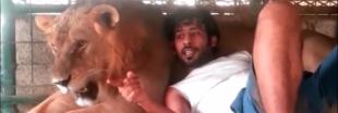 Émirats arabes unis : la fin des animaux sauvages comme animaux de compagnie