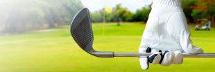 Préserver une zone humide ou construire un golf ? La Gironde a choisi le golf