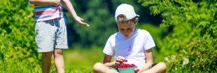 Combattre l'obésité infantile grâce à la découverte de la vie à la ferme