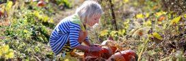 Supprimez les pesticides de votre jardin: les magasins Botanic les collectent