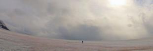 La glace rose de l'Alaska n'est pas si poétique que ça