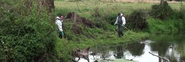 Une nouvelle  laiterie Lactalis condamnée pour rejet polluant dans une rivière