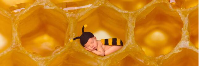 Le miel interdit aux nourrissons !