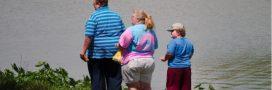 Un patch pour soigner l'obésité?