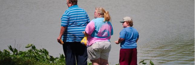 Un patch pour soigner l'obésité ?