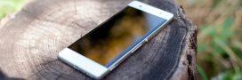 Vous avez un smartphone? 5 astuces simples pour réduire son impact sur l'environnement