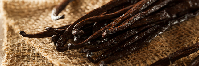 Tout ce qu'il faut savoir sur la vanille