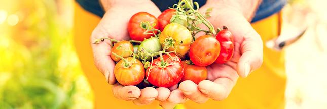EDITO - La permaculture peut beaucoup mais pas tout