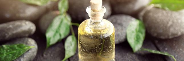 arbre th 6 mani res d 39 utiliser l 39 huile essentielle au quotidien. Black Bedroom Furniture Sets. Home Design Ideas