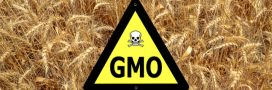 Bayer cède une partie de son activité à BASF pour racheter Monsanto