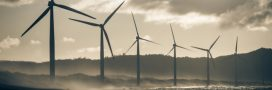 La filière éolienne française entre vents et marées