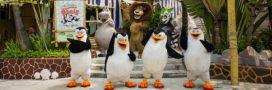 Comment Hollywood peut participer à la protection des espèces menacées