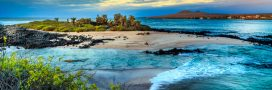 Les îles, des écosystèmes fragilisés