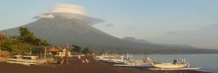 Bali : avant l'éruption du mont Agung, des ONG sauvent les animaux oubliés