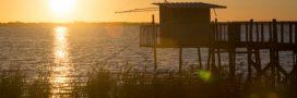 Où se trouveront les 4 nouveaux parcs naturels régionaux en France?