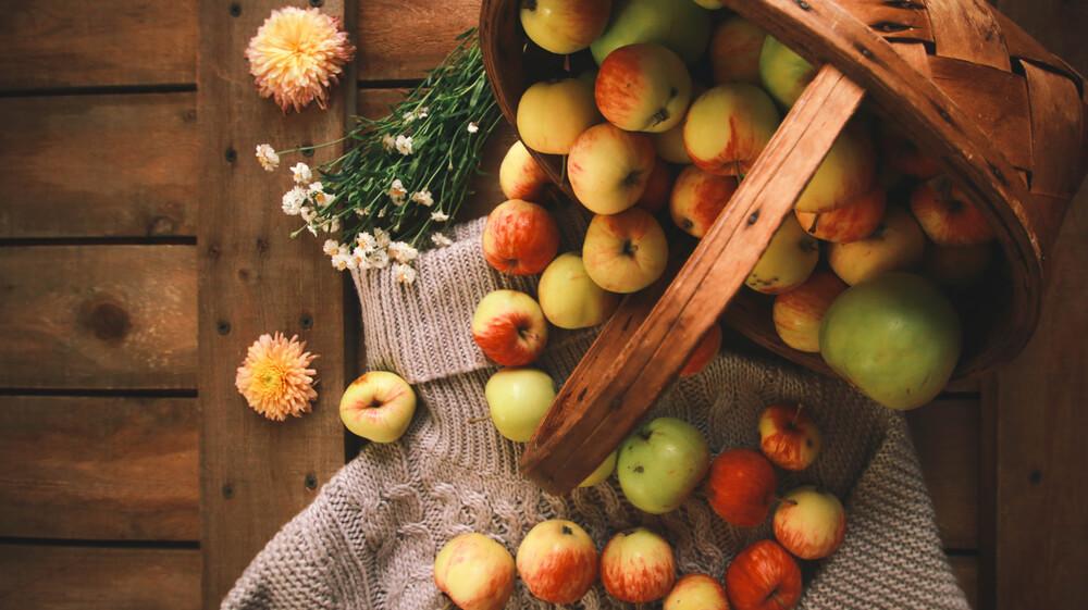 pommes anciennes, pommes oubliées