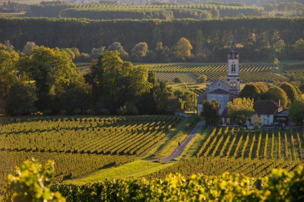 routes des vins, bordeaux