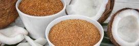 Le sucre de coco: succombez à sa saveur exotique