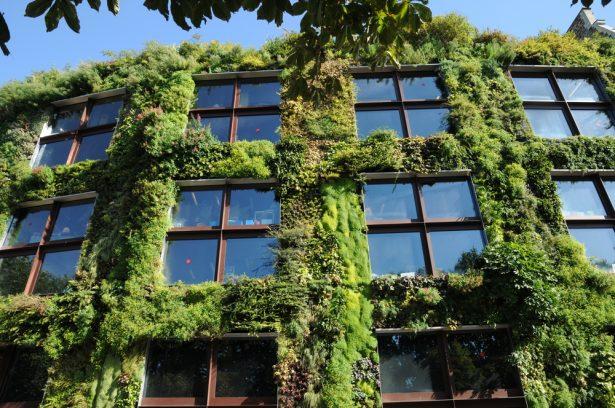 ville verte, végétalisation des villes