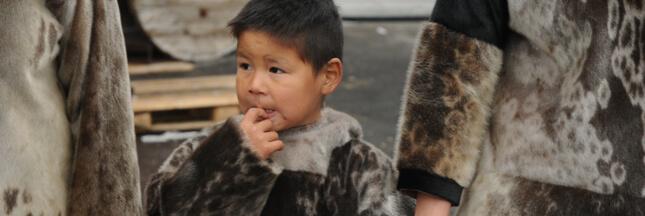 Clash au Canada entre Inuits et défenseurs des animaux