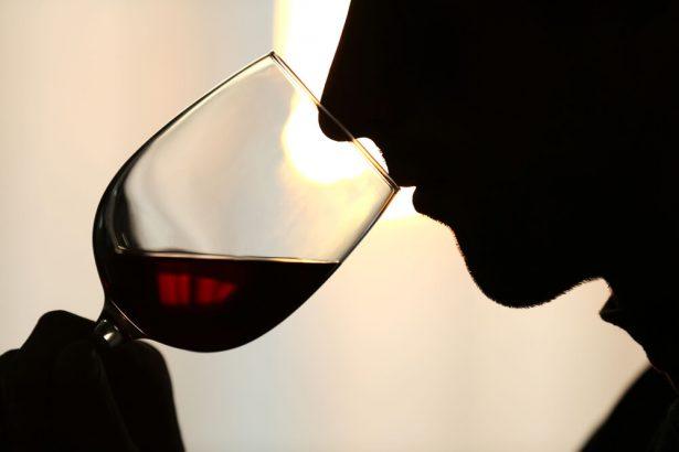 mouche tombée dans un verre, verre de vin