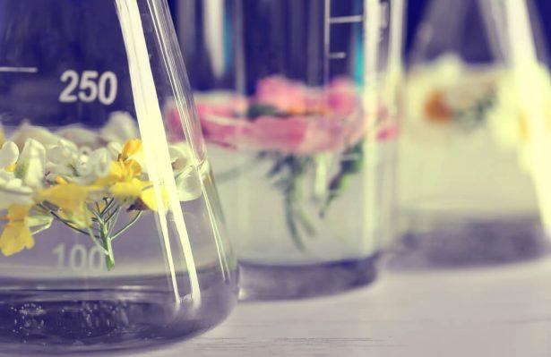 alcool responsable, azzaro, fabrication du parfum