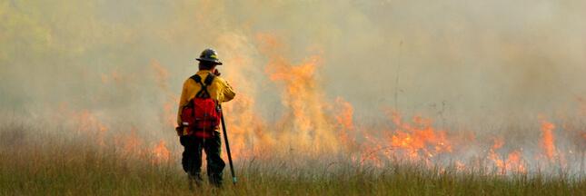 Un célèbre parc national brésilien est en train de disparaître sous les flammes