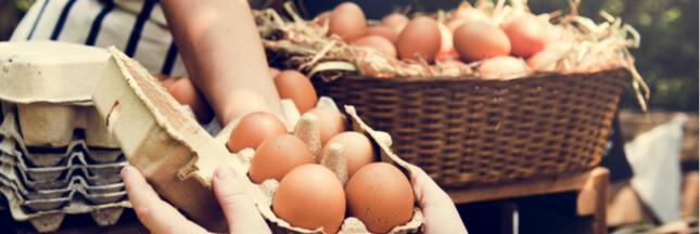 La transition agricole et alimentaire est déjà à l'oeuvre: les 10 signaux qui le prouvent