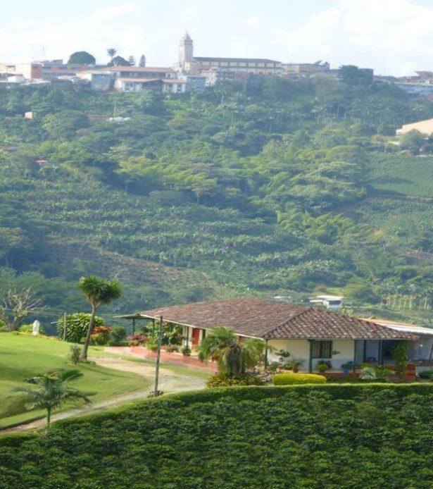 producteur de café, finca, colombie