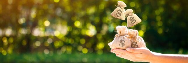 Et si vous étiez l'heureux élu d'un revenu universel de 1.000 euros par mois ?