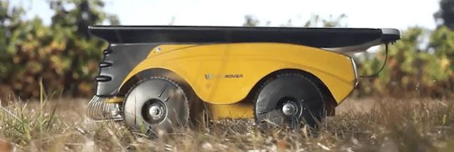 Un petit robot pour remplacer le glyphosate