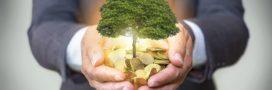 Huit grandes entreprises dégainent 50 millions d'euros pour le climat