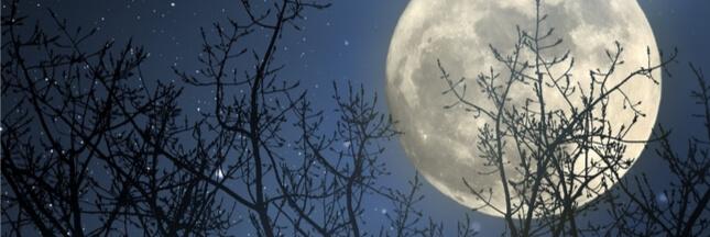 Bientôt de la pub même sur la lune!