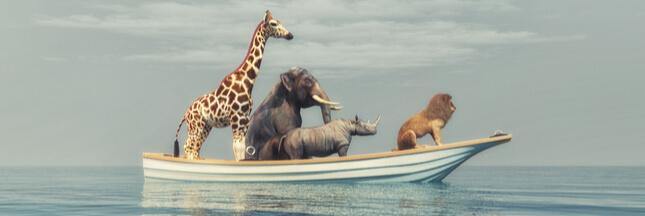 Quel est l'animal encore vivant le plus ancien de la planète ?