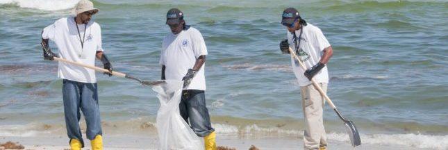 Comment s'engager pour préserver les océans ?