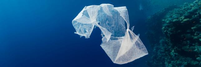 Pollution plastique des océans : l'ONU passe à l'attaque
