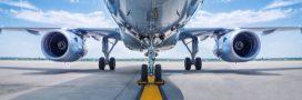 Notre Dame des Landes: le point final pour l'aéroport de la division
