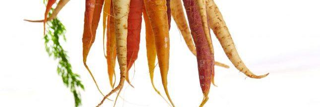 Votre bonne résolution 2018 : manger plus de fruits et de légumes par jour