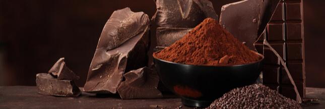 Le chocolat ne disparaîtra pas dans 40 ans suite au changement climatique