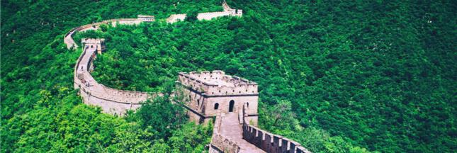 La Chine se lance dans la reforestation