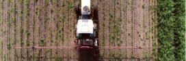 Glyphosate: des métaux lourds détectés dans les herbicides