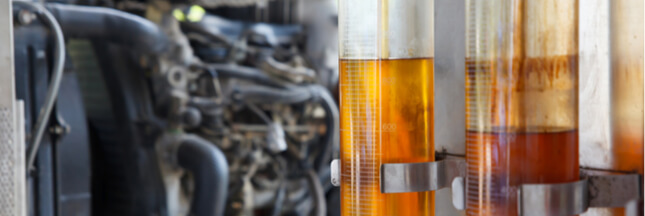 L'huile de palme, bientôt interdite dans les moteurs