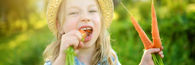 Les grands aliments: éloge de la carotte
